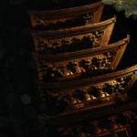 奈良の五重塔・・・夜